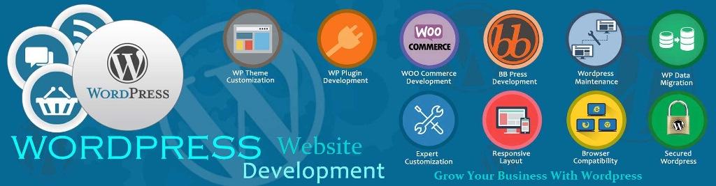 WordPress Technology