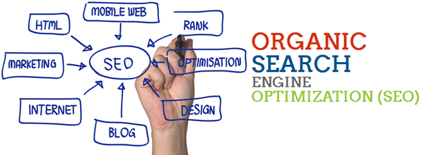 Organic Search Optimization